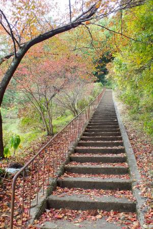 kakuda_03.jpg